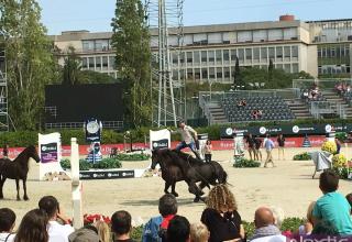 csio-santi-serra-polo-caballos-38-copia