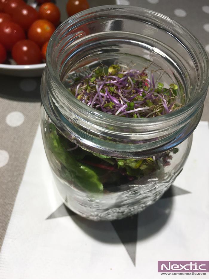 Ensaladas-tarros-masonjar-casa-viva-nextic-gourmet-vegano-isabel-manu-nunez (10)