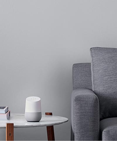 Google-Home (3)