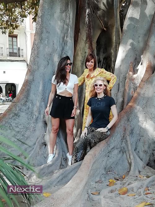De izquierda a derecha: Verónica Hidalgo, Naima Barcelona y Miriam Victoria en uno de los ficus centenarios en la plaza Gabriel Miró de Alicante.