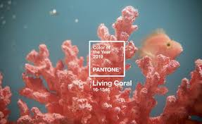 Living Coral es el color Pantone 2019