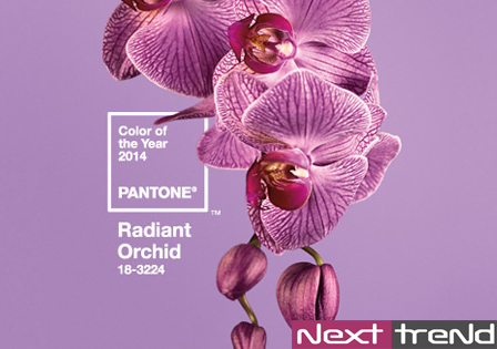 pantone-colour-of-the-year-design-nexttrend