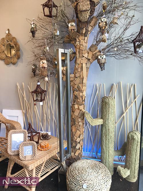 tendencia-cactus-decoracion-2477